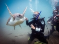 PADI Divemaster internship - Diving in Tenerife