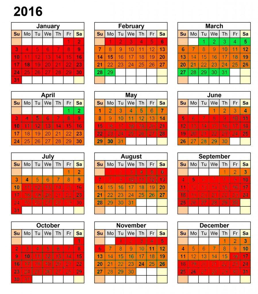 PADI Divemaster Internship free dates 2016
