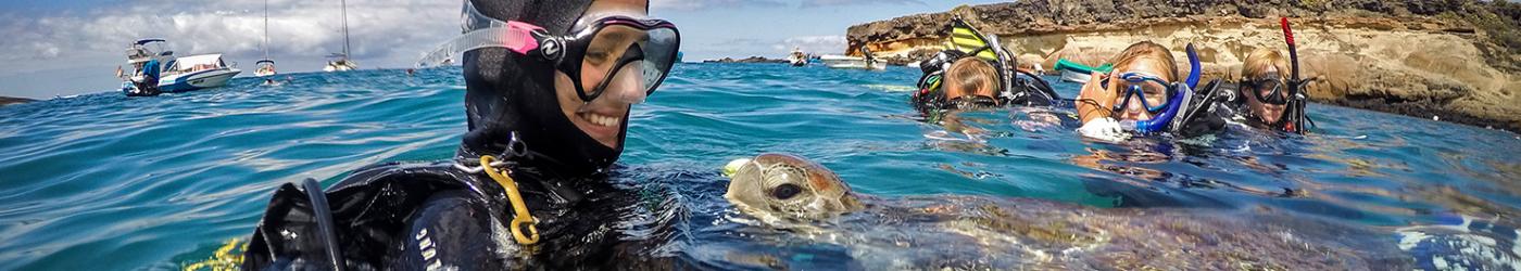 PADI-Divemaster-Internship-Academy-Snorkelling-snorkeling-with-Turtles-Green-Turtle-Surface
