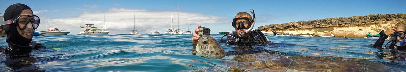 PADI-Divemaster-Internship-Academy-Tenerife-Diving-With-Turtles-Surface