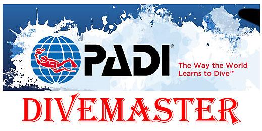 PADI Divemaster internship questions