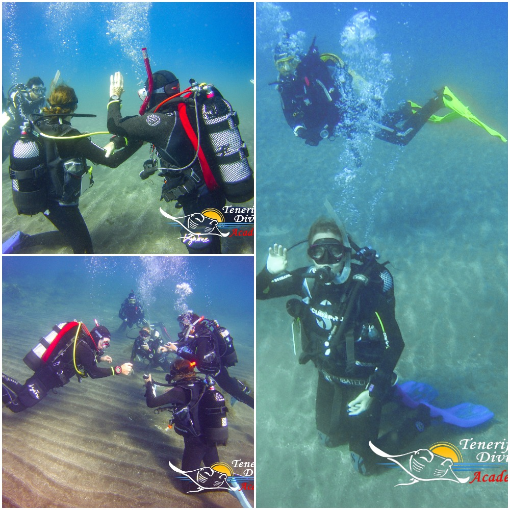 PADI OPEN WATER DIVER COURSE WITH ELIA, KRISTYNA AND IAN